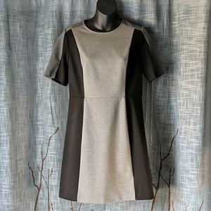 ☀️3/$25 LOFT Black Gray Color Block Petite Dress